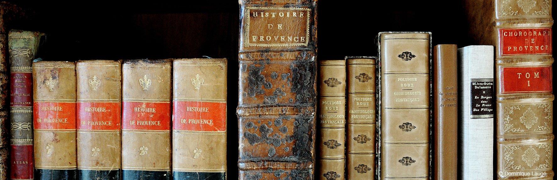 Histoire de provence D. Laugé